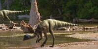 Thescelosaurus/Gallery