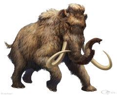 Woolymammoth1.jpg