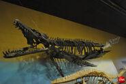 DinoPliosaurs 1 540x359