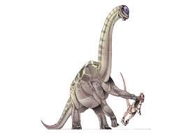 File:Borthriospondylus.png