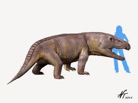 Erythrosuchus NT