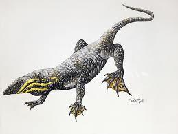 Thadeosaurus