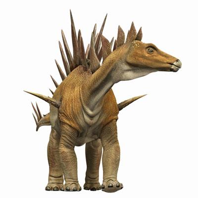 File:Tuojiangosaurus23.jpg