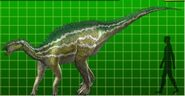 Camptosaurus dk