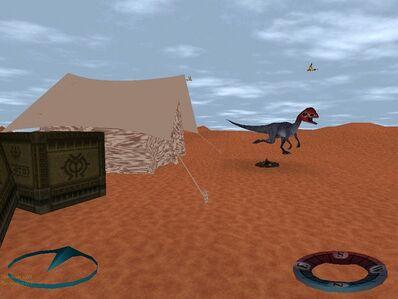 Coelophysoid dinosaur