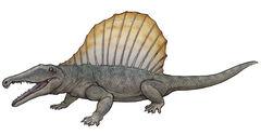 Secodontosaurus.JPG