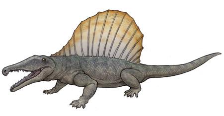 File:Secodontosaurus.JPG