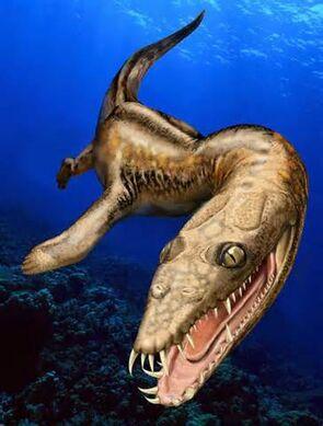Ceresiosaurus