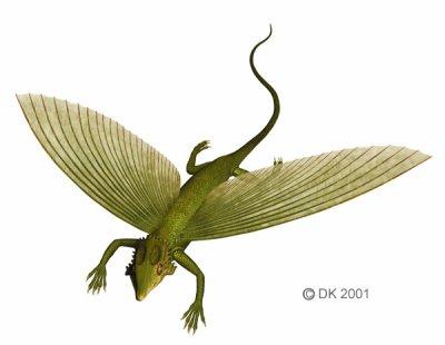 Weigeltisaurus