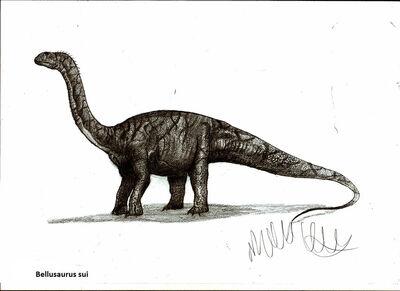 Bellusaurus sui by teratophoneus-d4wz82z