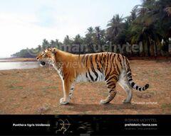 Panthera-trinilensis-738x591.jpg
