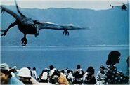 Rhamphorhynchus 1977 01