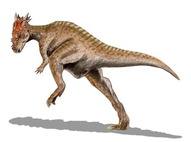 File:Dracorex BW.jpg