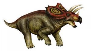 Coahuilaceratops-4 bp blogspot-300x168