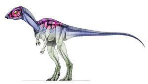 Micropachycephalosaurus-1