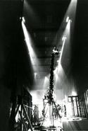 Smithsonian Diplodocus 2