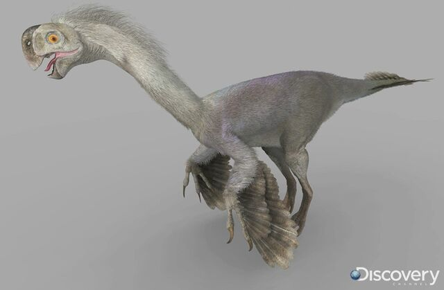 File:Gigantoraptor male 954f.jpg