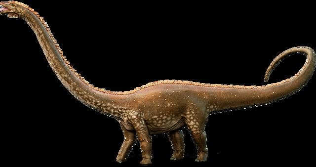 File:Diplodocus whole amzt6e.png