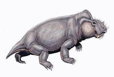 800px-Rabidosaurus12DB