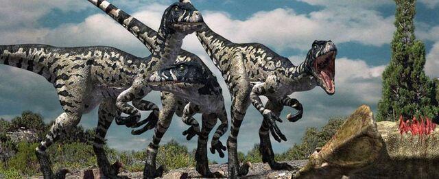 File:367 dromaeosaurus doruk.jpg