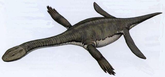 File:Dactylosaurus.jpg