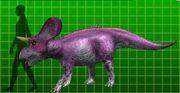 Zuniceratops dk