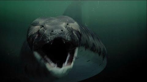 Titanoboa Monster Snake - Teaser