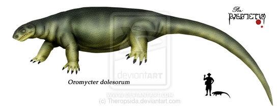 Oromycter dolesorum
