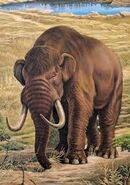 Americanmastodon