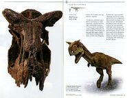 National-geographic-dinosaurs005