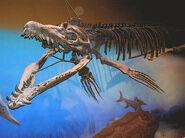 Pliosaurusexibit