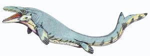 MosasaurusInfobox