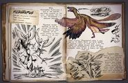 800px-Microraptor Dossier