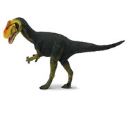 Proceratosaurus web