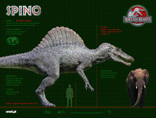 File:SPINO WP 1024.jpg