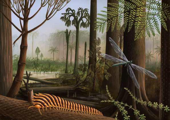 File:Carboniferous.jpg