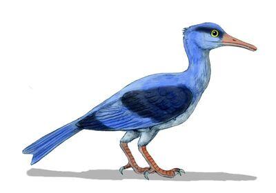 Longipteryx BW