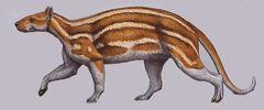 Phenacodus.jpg