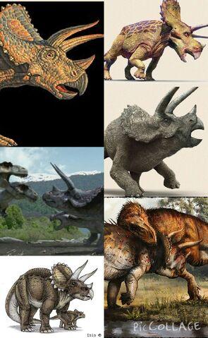 File:Stegosaurus (2).jpg