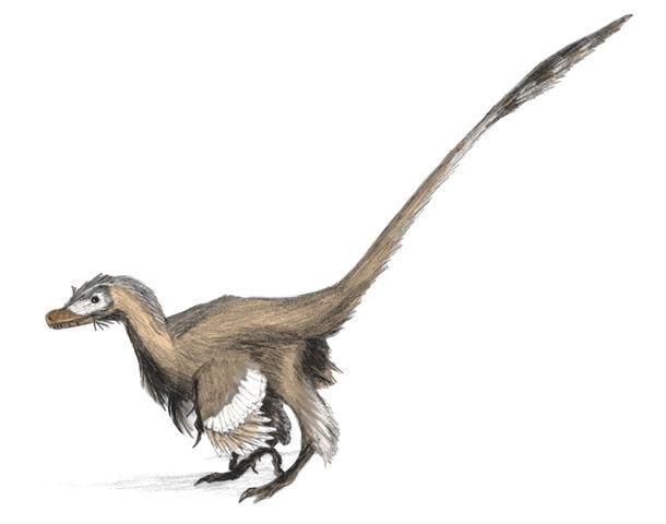 File:Velociraptor dinoguy2.jpg