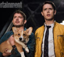 Dirk Gently's Holistic Detective Agency (BBC America)