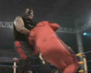 Mexican wrestling4