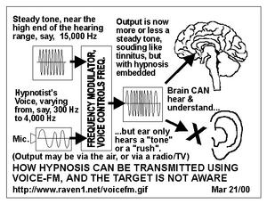 FM voice controls