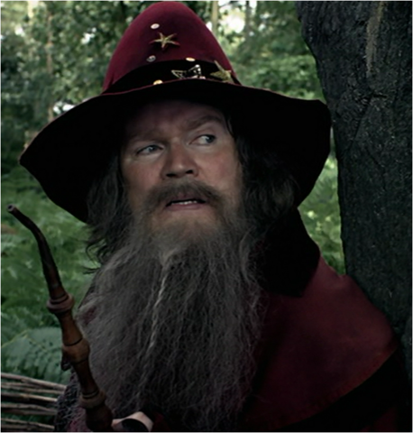 File:Wizard leader.png