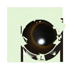 File:Whale Eye.png
