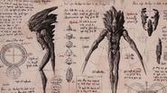 Void Creature Study Concept