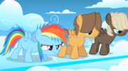 File:180px-Filly Rainbow Dash ready to race S1E23.png