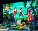 Disney Junior Live Pirate and Princess Adventure