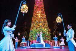Frozen Tree Lighting Ceremony HKDL 2015