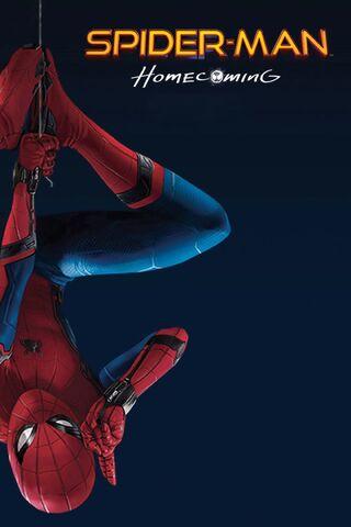 File:SMH IMAX poster.jpg